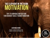 The Elephant In The Room: Motivatio...