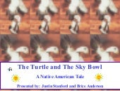 The Turtle and The Sky Bowl
