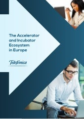 The accelerator and_incubator_ecosy...