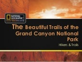 The Beautiful Trails of the Grand Canyon National Park