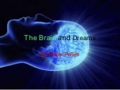 The brain and dreams