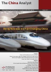 The China Analyst   March 2011