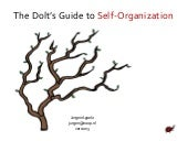 The Dolt's Guide To Self-Organization