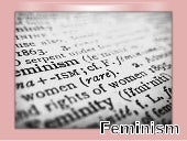 The feministapproachinliterarycriti...