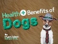 The Health Benefits of Dogs