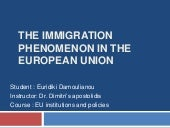 The immigration phenomenon in the e...