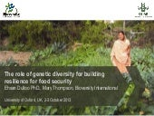 The role of genetic diversity for b...