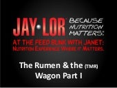The Rumen and the  (TMR) Wagon part 1
