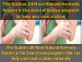 The Scabies 24 Hour Natural Remedy Report is the most effective program to help you cure scabies