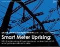 [Smart Grid Market Research] (Part 2 of 3 Part Series): The U.S. Smart Meter Uprising, Zpryme Smart Grid Insights, September 2011