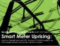 [Smart Grid Market Research] (Part 3 of 3 Part Series): The U.S. Smart Meter Uprising, Zpryme Smart Grid Insights, August 2011