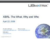 The What Why And Who Of Xbrl