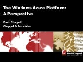 The Windows Azure Platform: A Persp...