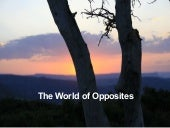 The World of Opposites