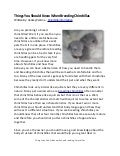 Things You Should Know When Breeding Chinchillas