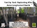 Yard by Yard: Replanting After Asian Longhorned Beetle
