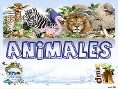 Animales en el Zoo de Madrid