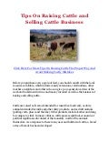 Tips On Raising Cattle and Selling Cattle Business