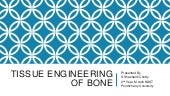Tissue engineering of bone