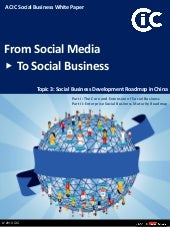 Social Business Development Roadmap...