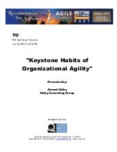 Keystone Habits of Organizational Agility