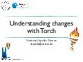Understanding Changes with Torch