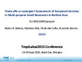 Trade-offs or synergies? Assessment of Ecosystem Services in Multi-purpose Small Reservoirs in Burkina Faso