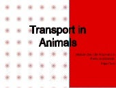 Transport in animals