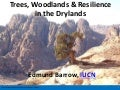 Trees, woodlands and resilience in the drylands