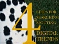 4 Steps for Trend Searching and Spotting by Paris Daniell