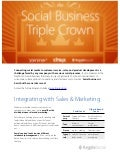 The Social Business Triple Crown Brief