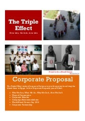 Triple Effect Corporate Proposal