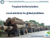 Tropical deforestation - Local solu...
