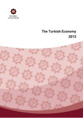 The Turkish Economy 2013