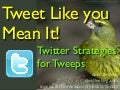 Tweet Like You Mean It! Twitter Strategies For Tweeps