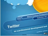 Twitter: As A Professional Developm...