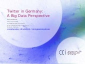 Twitter in Germany: A Big Data Perspective