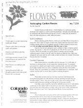 Xeriscaping: Garden Flowers - Colorado