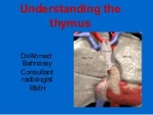 Understanding the thymus