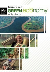 UNEP Forests Green Economy Report