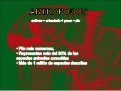 antropodos-parasitos