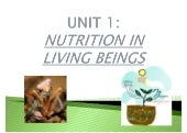 2º ESO UNIT 1 LIVING BEINGS NUTRITION