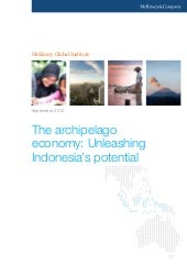 Unleashing Indonesia Potential