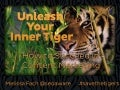 Unleash Your Inner Tiger in Content Marketing