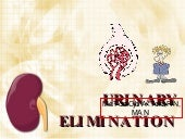 Urinary Elimination
