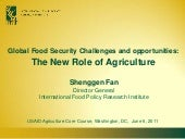 Global Food Security Challenges and...
