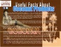 Useful facts about coconut products