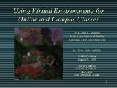 Using Virtual Environments For Onli...