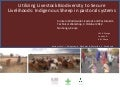 Utilizing livestock biodiversity to secure livelihoods: Indigenous sheep in pastoral systems