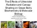 Uv radiation-and-molecular-effects